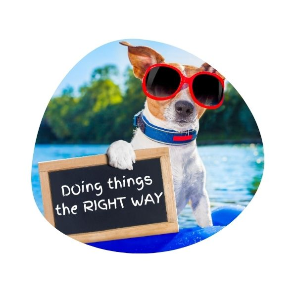 "Dog wearing red sunglasses on a bright blue floatie, holding a chalkboard sign that reads ""Doing things the RIGHT WAY"""